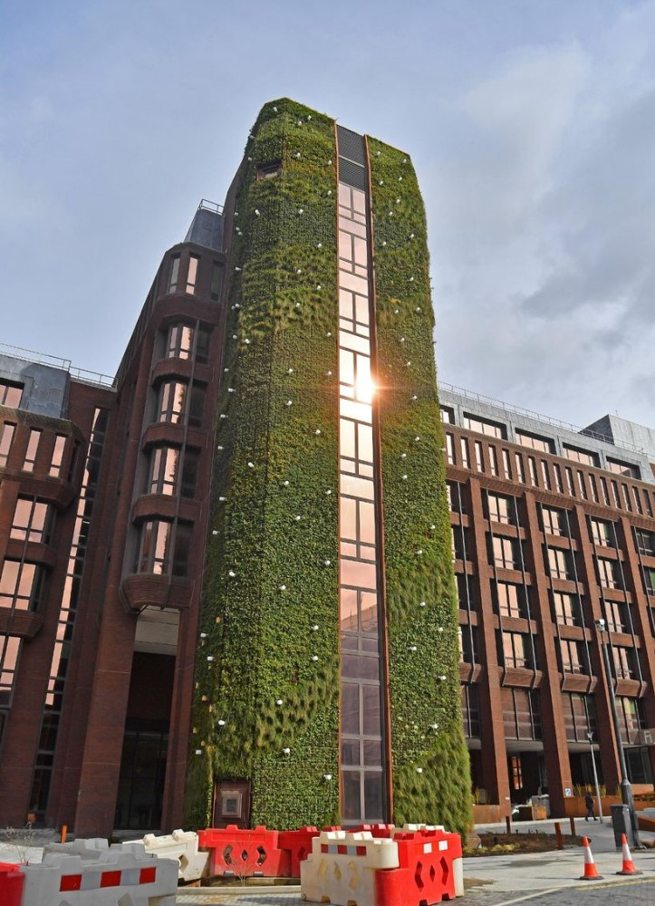 Living wall by ANS Global on a building